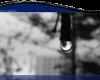 rain12_1