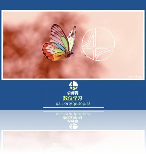 qiutopia2018butterfly