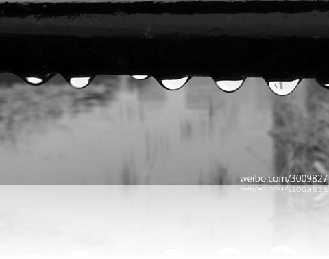 rainwq