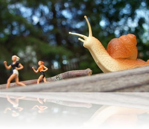 snailwalker